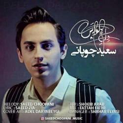 دانلود آهنگ دل دلواپس از سعید چوپانی  با متن ترانه
