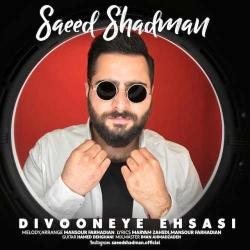 دانلود آهنگ دیوونه ی احساسی از سعید شادمان  با متن ترانه