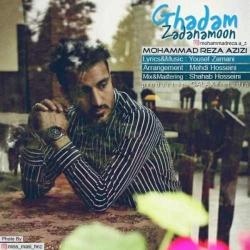 دانلود آهنگ قدم زدنامون از محمدرضا عزیزی  با متن ترانه