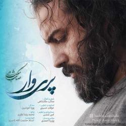 دانلود آهنگ پریوار از صائب ملکشاهی  با متن ترانه