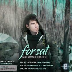 دانلود آهنگ فرصت از محمد هاشمی  با متن ترانه