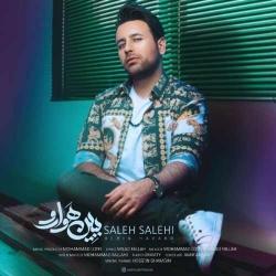 دانلود آهنگ ببین هوارو از صالح صالحی  با متن ترانه