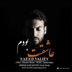 دانلود آهنگ عاشقت بودم از سعید ولیی  با متن ترانه