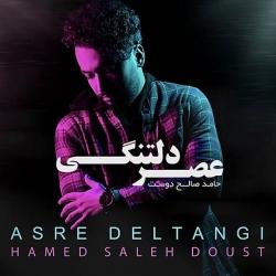 دانلود آهنگ عصر دلتنگی از حامد صالح دوست  با متن ترانه