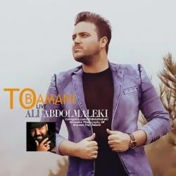 دانلود آهنگ تو با منی از علی عبدالمالکی با متن ترانه و شعر