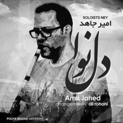 دانلود آهنگ دل نوا از امیر جاهد  با متن ترانه