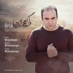 دانلود آهنگ دلگیرم از دنیا از آریا حمد الله زاده  با متن ترانه