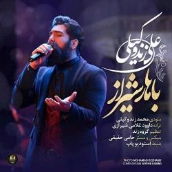 دانلود آهنگ باهار شیراز از علی زند وکیلی  با متن ترانه