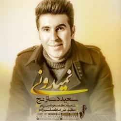 دانلود آهنگ نمیدونی از سعید دسترنج  با متن ترانه