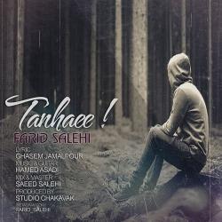 دانلود آهنگ تنهایی از فرید صالحی  با متن ترانه