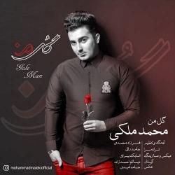 دانلود آهنگ گل من از محمد ملکی  با متن ترانه