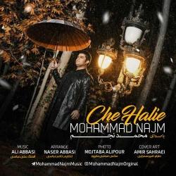 دانلود آهنگ چه حالیه از محمد نجم  با متن ترانه